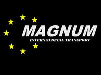 Małgorzata Gnutek P.P.H.U. MAGNUM Opinie